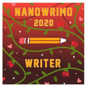 NaNoWriMo 2020 Writer